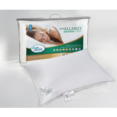 Product partial anti allergy pillow dec2019